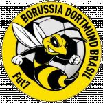 Borussia Dortmund Brasil